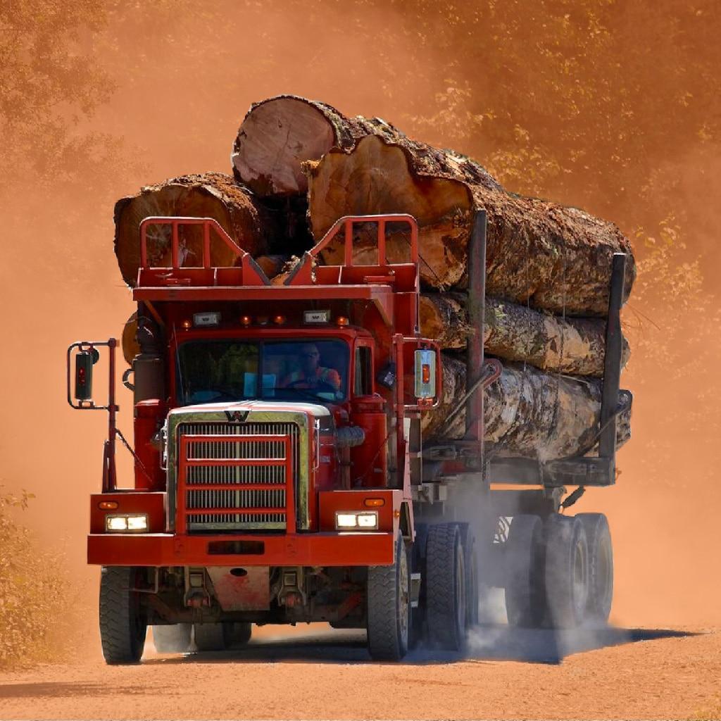 Holbrook Dyson Logging Cutout Shot